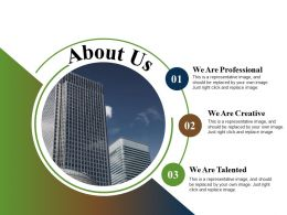 About Us We Are Professional We Are Creative