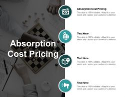 Absorption Cost Pricing Ppt Powerpoint Presentation Ideas Elements Cpb