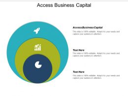 Access Business Capital Ppt Powerpoint Presentation Gallery Show Cpb