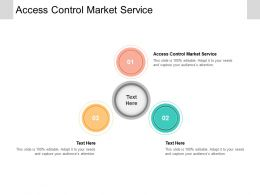 Access Control Market Service Ppt Powerpoint Presentation Layouts Good Cpb