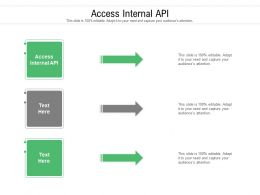 Access Internal API Ppt Powerpoint Presentation File Infographic Template Cpb