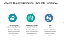 Access Supply Distribution Channels Functional Leaders Identify Projects