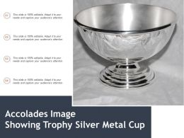 Accolades Image Showing Trophy Silver Metal Cup