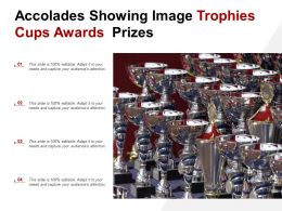 Accolades Showing Image Trophies Cups Awards Prizes