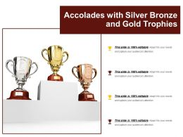 Accolades With Silver Bronze And Gold Trophies