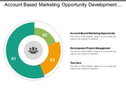 Account Based Marketing Opportunity Development Project Management Marketing Revenue Cpb