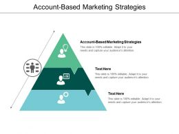 Account Based Marketing Strategies Ppt Powerpoint Presentation Styles Layouts Cpb