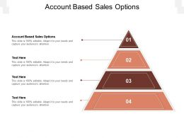 Account Based Sales Options Ppt Powerpoint Presentation Slides Structure Cpb