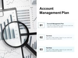 Account Management Plan Ppt Powerpoint Presentation Professional Background Designs Cpb