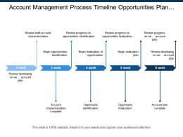 Account Management Process Timeline Opportunities Plan Opportunity
