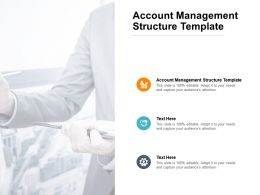 Account Management Structure Template Ppt Powerpoint Presentation Master Cpb