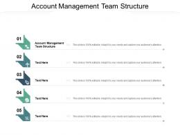 Account Management Team Structure Ppt Powerpoint Presentation Professional Ideas Cpb
