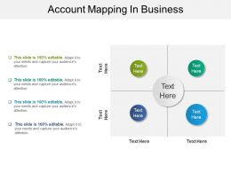 Account Mapping In Business Sample Of Ppt