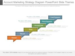 Account Marketing Strategy Diagram Powerpoint Slide Themes