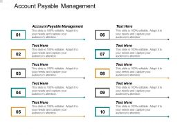 Account Payable Management Ppt Powerpoint Presentation File Example Cpb