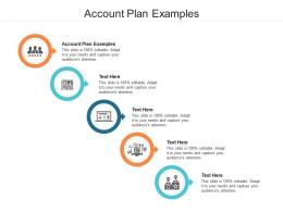 Account Plan Examples Ppt Powerpoint Presentation Model Background Cpb