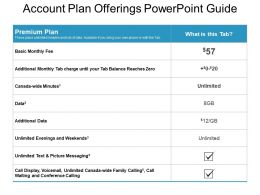 Account Plan Offerings Powerpoint Guide