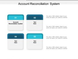 Account Reconciliation System Ppt Powerpoint Presentation Styles Portrait Cpb