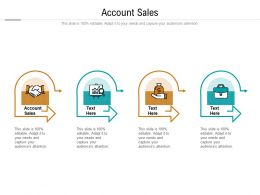 Account Sales Ppt Powerpoint Presentation Outline Model Cpb