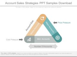 Account Sales Strategies Ppt Samples Download