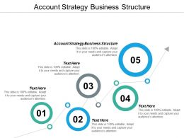 Account Strategy Business Structure Ppt Powerpoint Presentation Model Maker Cpb