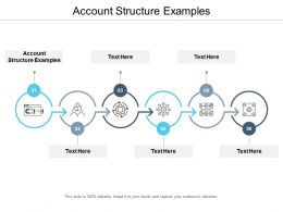 Account Structure Examples Ppt Powerpoint Presentation Gallery Visuals Cpb