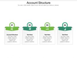 Account Structure Ppt Powerpoint Presentation Show Format Ideas Cpb