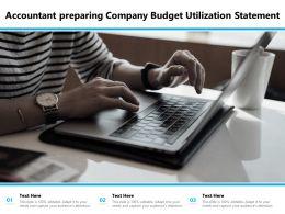Accountant Preparing Company Budget Utilization Statement
