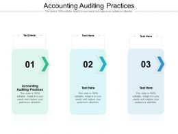 Accounting Auditing Practices Ppt Powerpoint Presentation Model Cpb