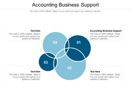 Accounting Business Support Ppt Powerpoint Graphics Tutorials Cpb
