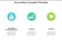 Accounting Concepts Principles Ppt Powerpoint Presentation Styles Elements Cpb