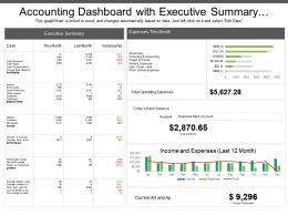Accounting Dashboard With Executive Summary And Monthly Expenses