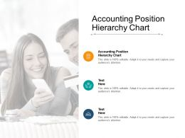 Accounting Position Hierarchy Chart Ppt Powerpoint Presentation Icon Outline Cpb