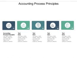 Accounting Process Principles Ppt Powerpoint Presentation Outline Icons Cpb