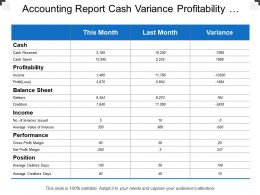 Accounting Report Cash Variance Profitability Balance Sheet
