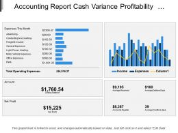 Accounting Report Cash Variance Profitability Balance Sheet Performance Position