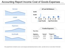 Accounting Report Income Cost Of Goods Expenses Net Profit