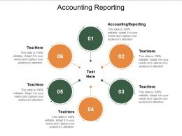 Accounting Reporting Ppt Powerpoint Presentation Good Cpb