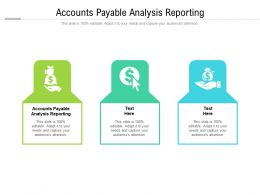 Accounts Payable Analysis Reporting Ppt Powerpoint Presentation Inspiration Cpb