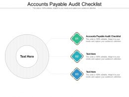 Accounts Payable Audit Checklist Ppt Powerpoint Presentation Portfolio Cpb