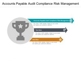 Accounts Payable Audit Compliance Risk Management Ppt Powerpoint Presentation Ideas Gridlines Cpb