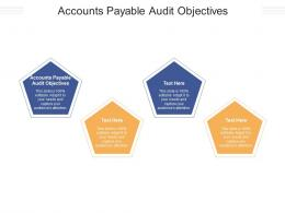Accounts Payable Audit Objectives Ppt Powerpoint Presentation Styles Layouts Cpb