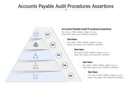 Accounts Payable Audit Procedures Assertions Ppt Powerpoint Presentation Cpb