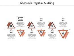 Accounts Payable Auditing Ppt Powerpoint Presentation Model Template Cpb