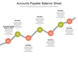 Accounts Payable Balance Sheet Ppt Powerpoint Presentation Styles Infographic Template Cpb