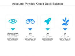 Accounts Payable Credit Debit Balance Ppt Powerpoint Presentation Layouts Examples Cpb