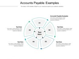 Accounts Payable Examples Ppt Powerpoint Presentation Ideas Design Templates Cpb