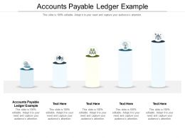 Accounts Payable Ledger Example Ppt Powerpoint Presentation Outline Information Cpb