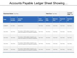 Accounts Payable Ledger Sheet Showing Supplier Name With Total Amount