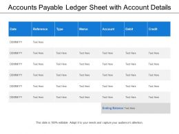 Accounts Payable Ledger Sheet With Account Details